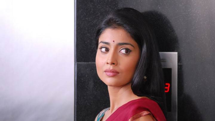 Shriya Saran Looking Side In Nuvva Nena